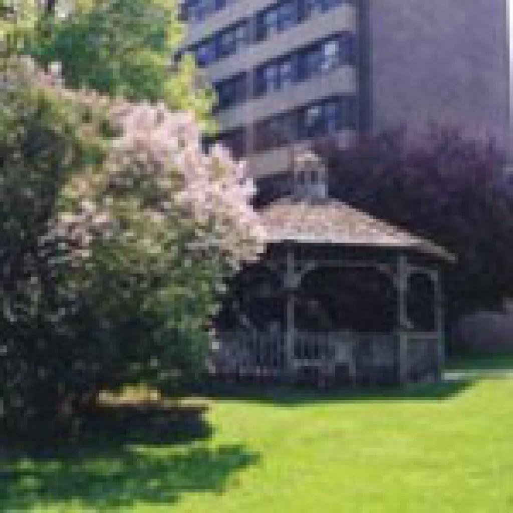 Mason Manor